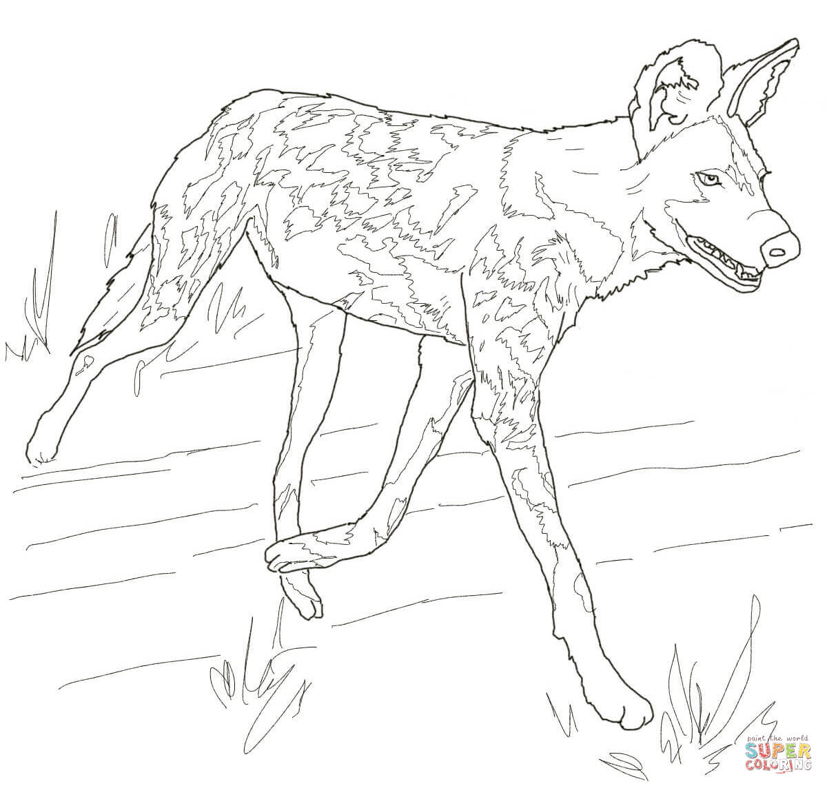 serval cat coloring page click the african wild to view printable