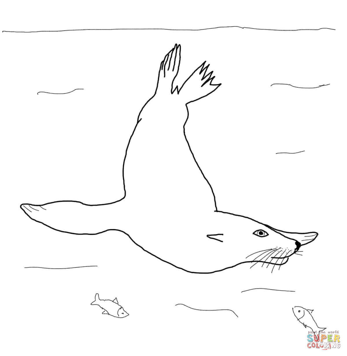 California Sea Lion Swimming Underwater Coloring Page