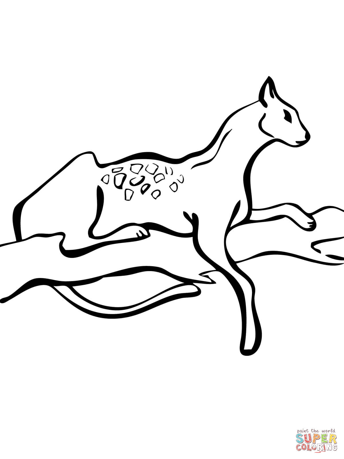 serval cat coloring page cats online pages 1 wild cat coloring