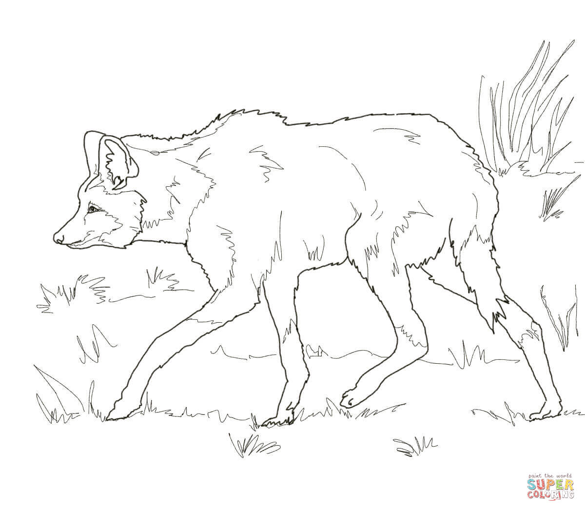 south american maned wolf coloring page supercoloring com