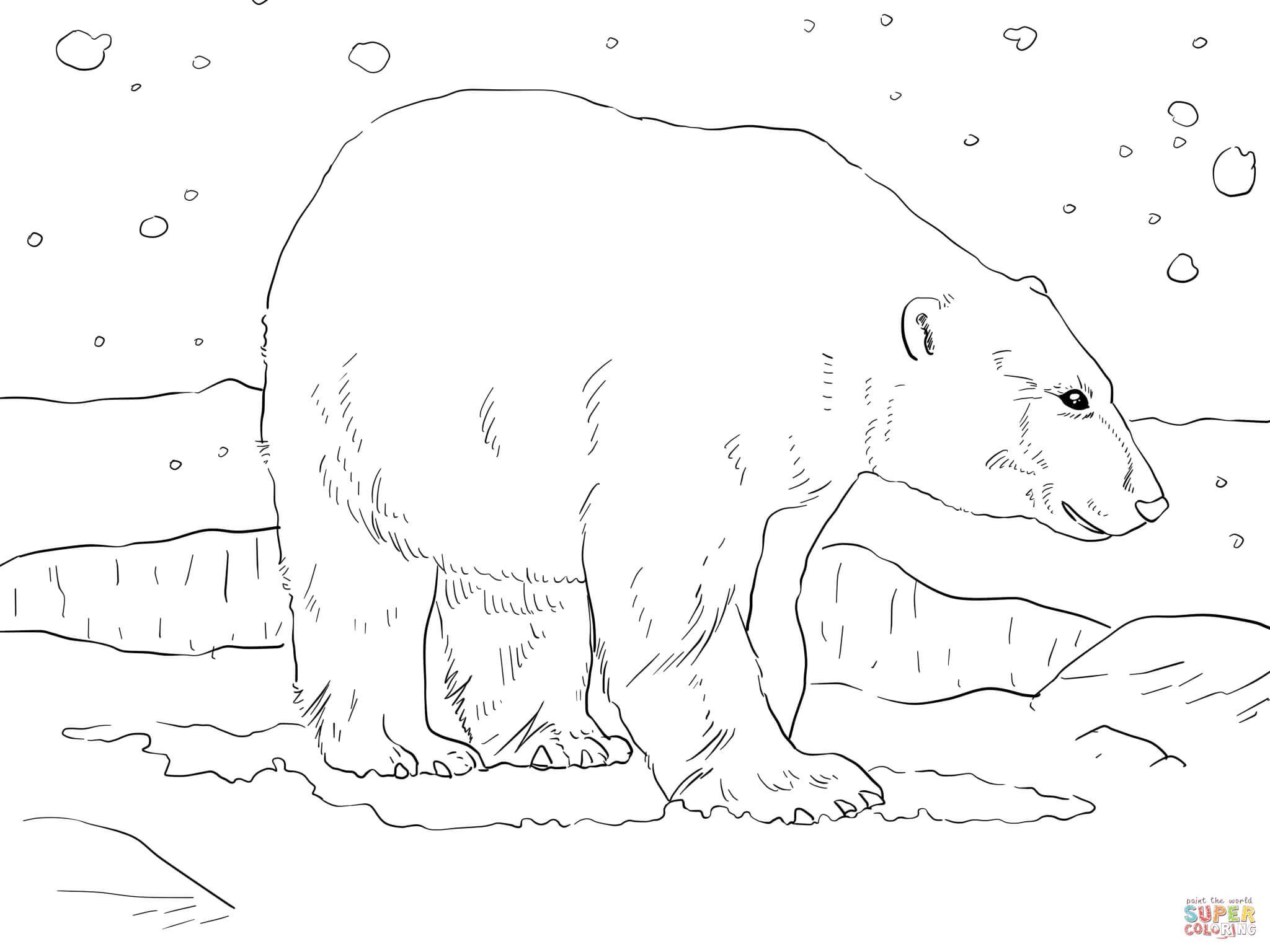 vous aimerez peut être aussi les coloriages de la catégorie ours