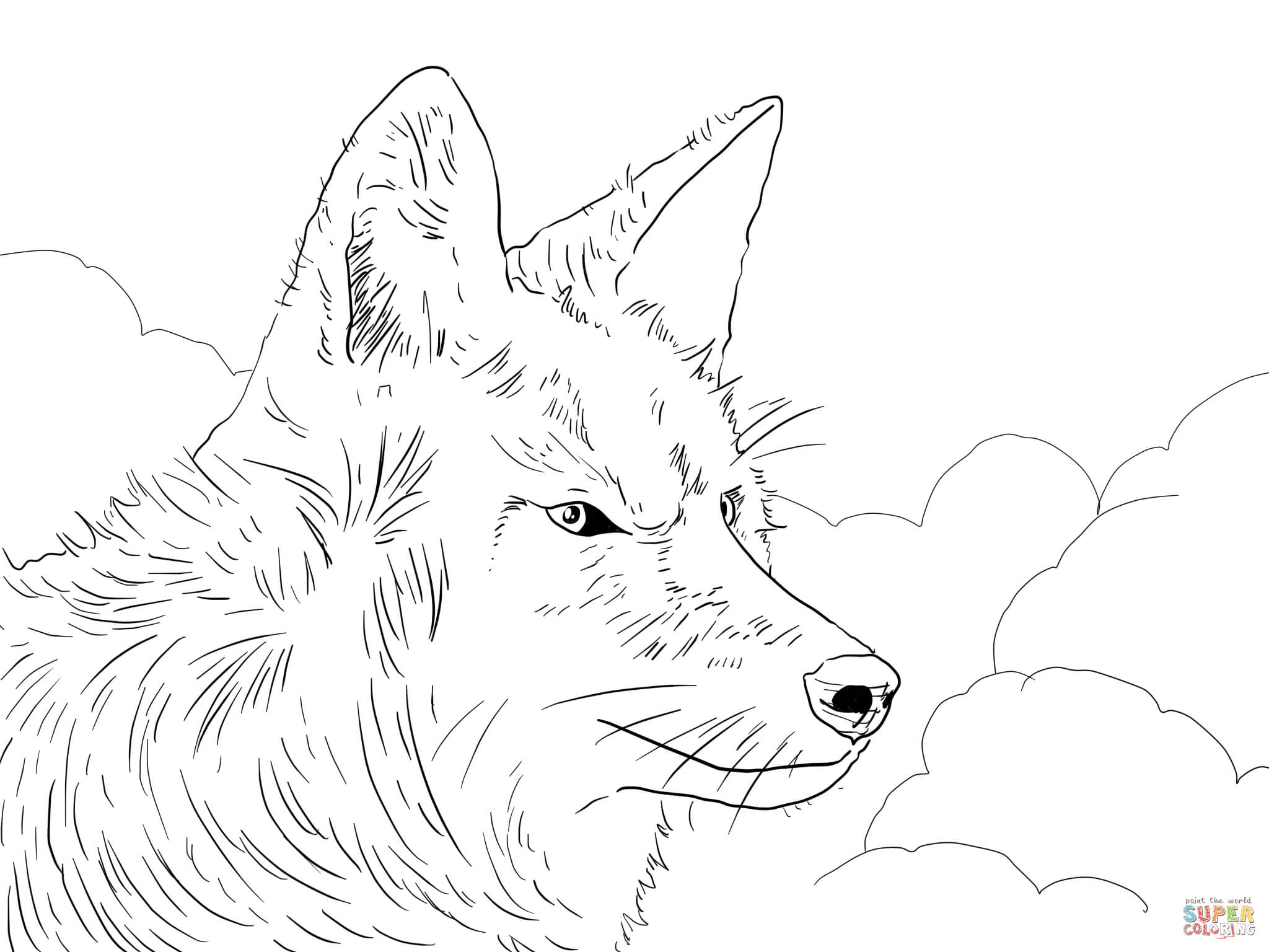 Coyote Head Coloring Page