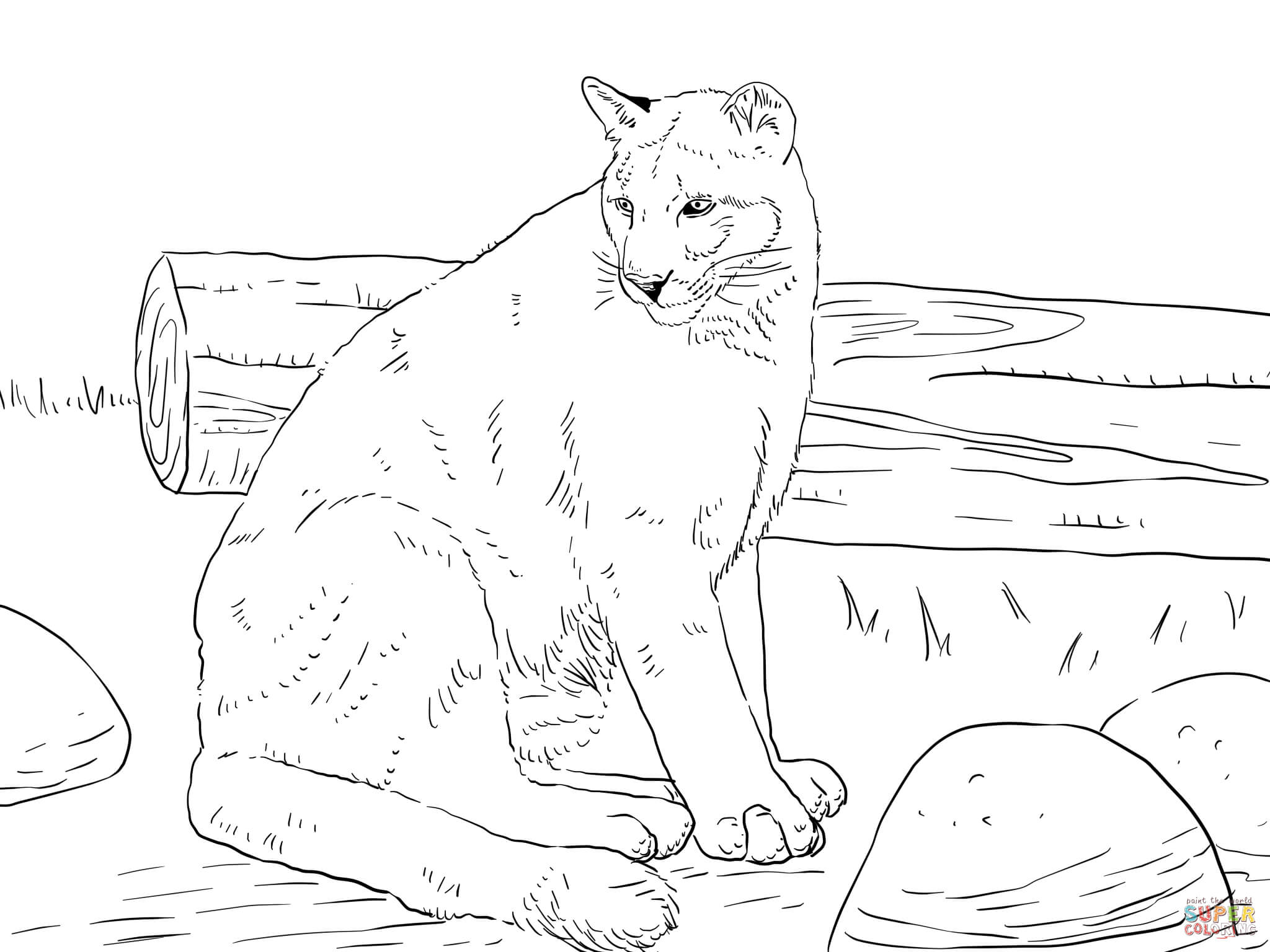 Sitting Cougar Coloring Page