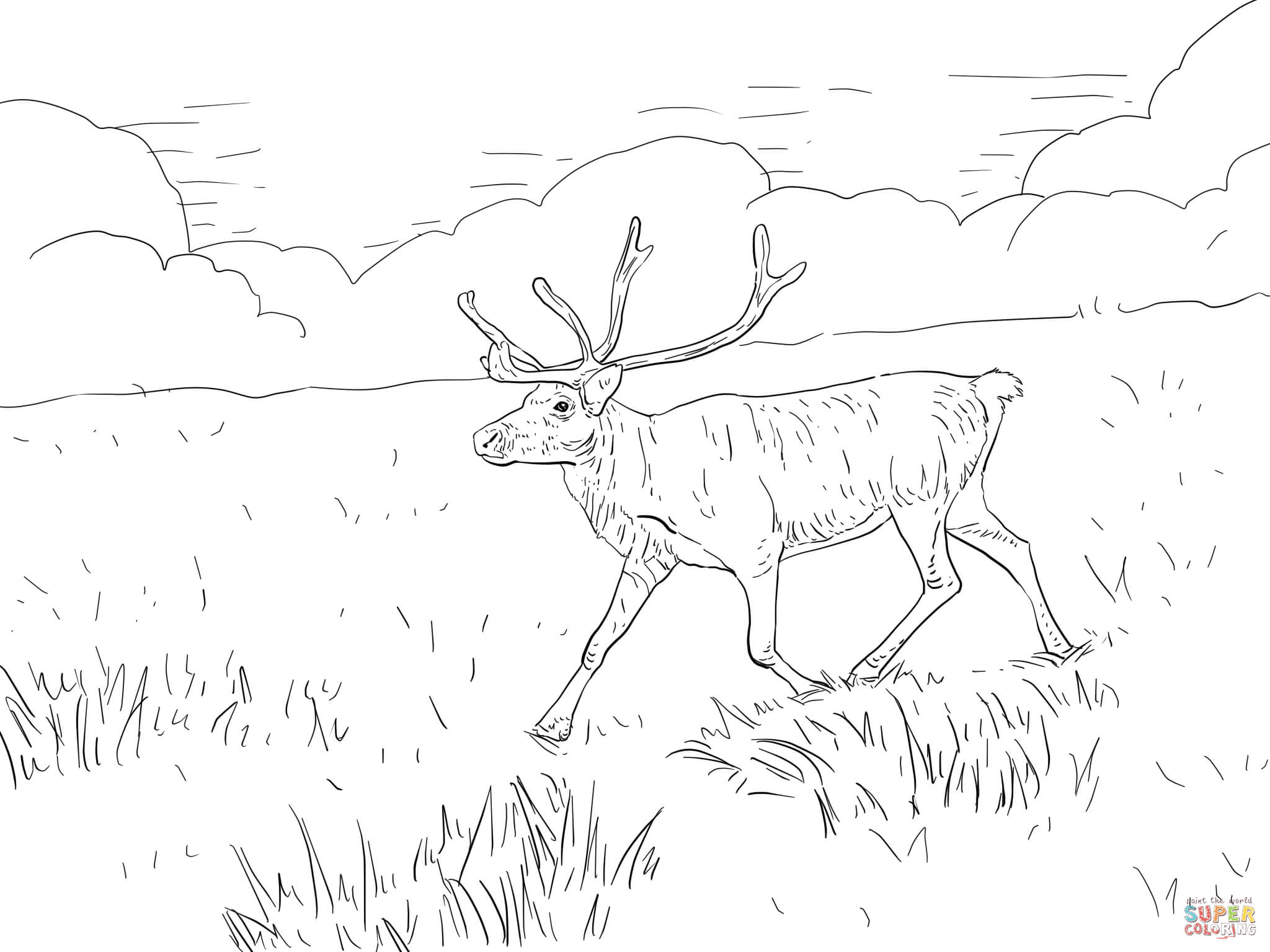 Finnish Forest Reindeer Coloring Page