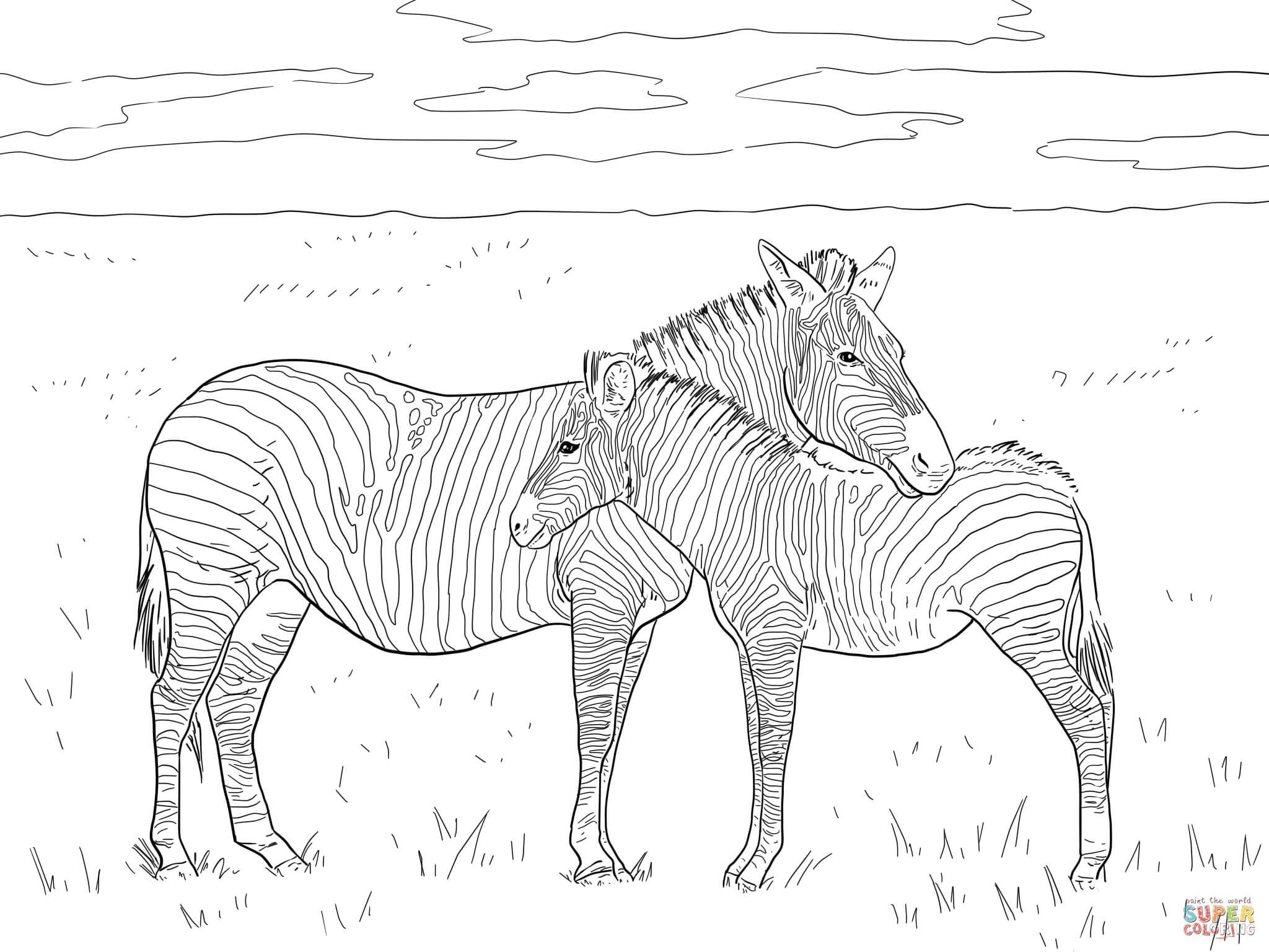 grant 39 s plain zebras coloring page free printable coloring pages