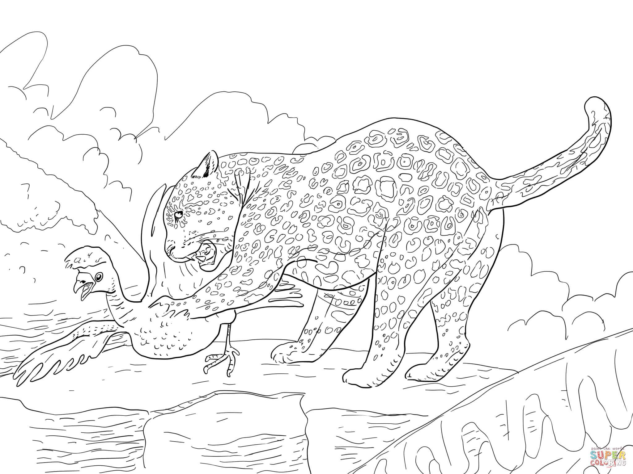 Jaguar Catches A Bird Coloring Page