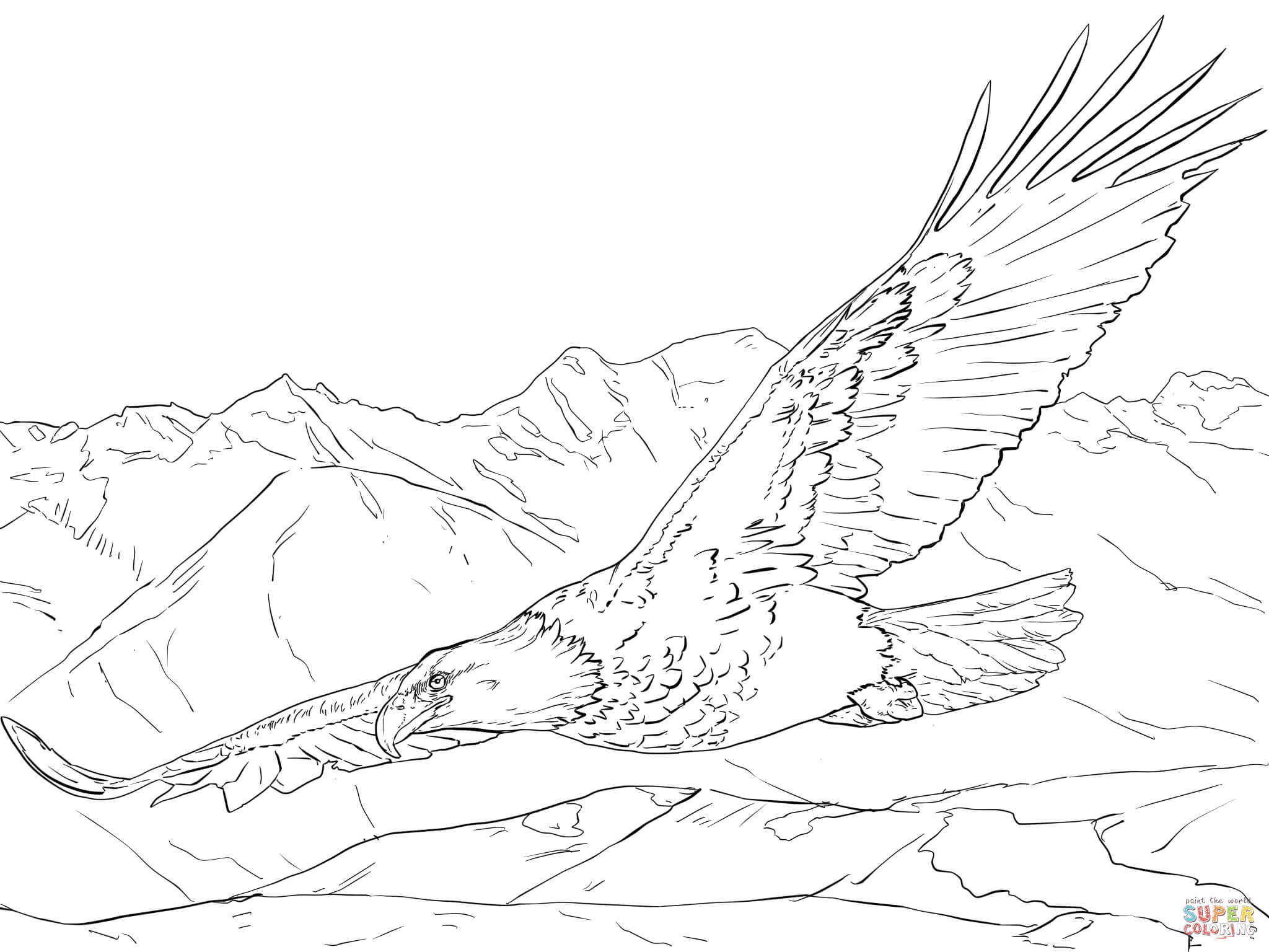 Bald Eagle Soaring Coloring Page