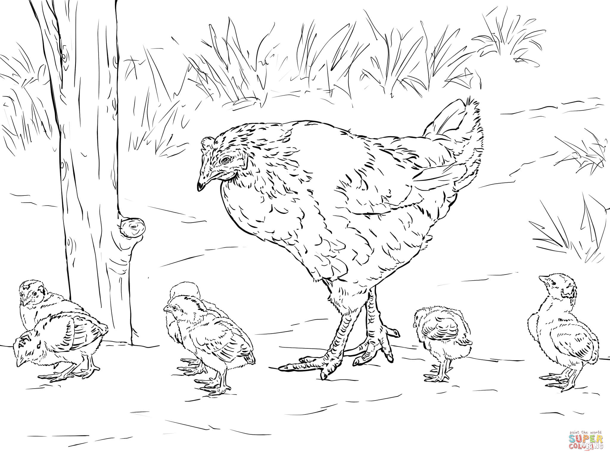 Hen With Chicks Coloring Page