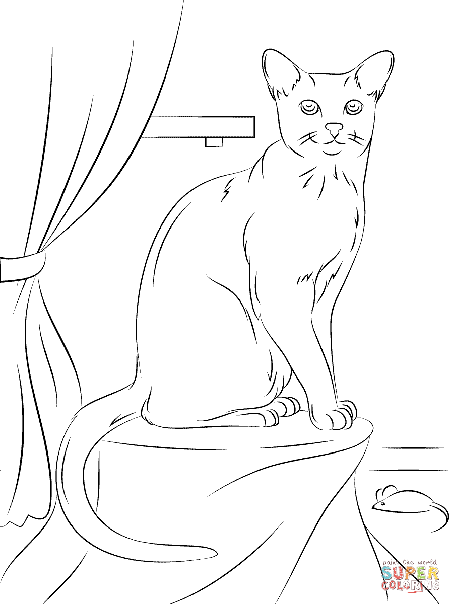 Russian Blue Cat Coloring Page Free Printable Coloring Pages