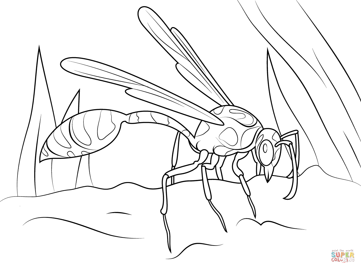 Mud Dauber Wasp Coloring Page