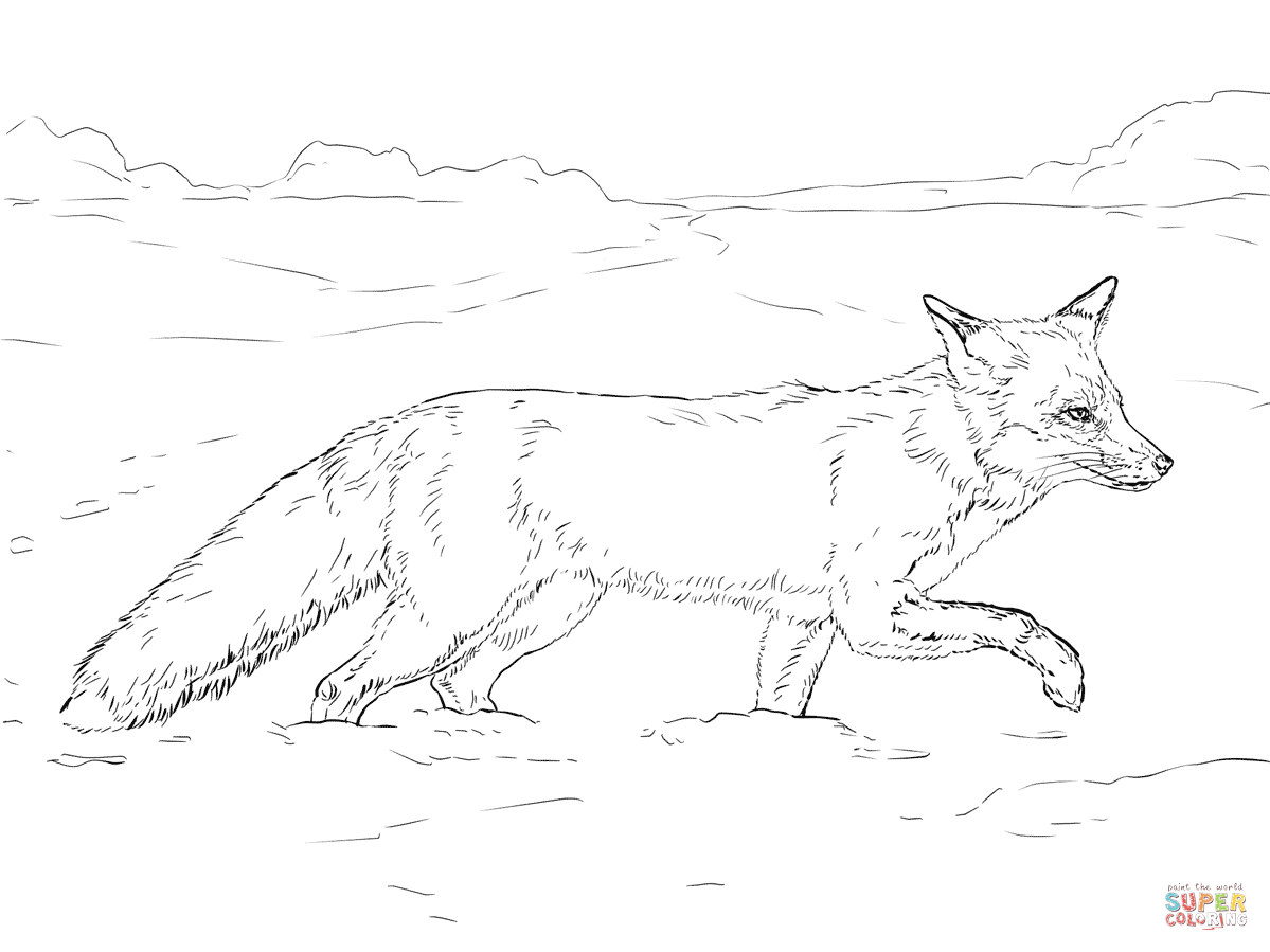 Kf8 Descargar Arctic Animals Coloring Pages For Kids