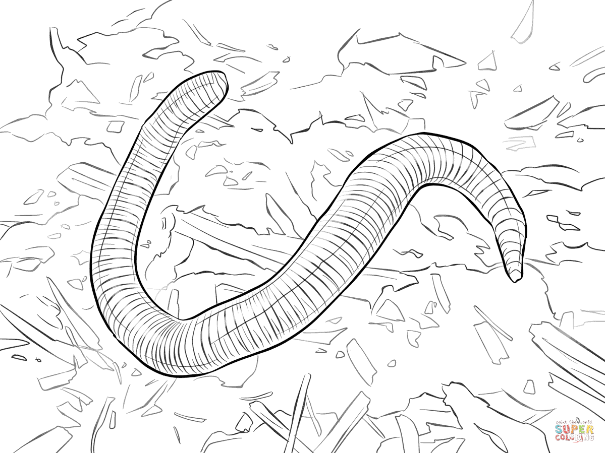 Ausmalbild Stinkwurm
