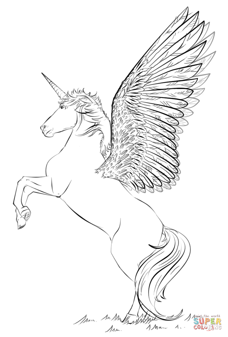 Unicorn With Wings Coloring Page Free Printable Coloring Pages
