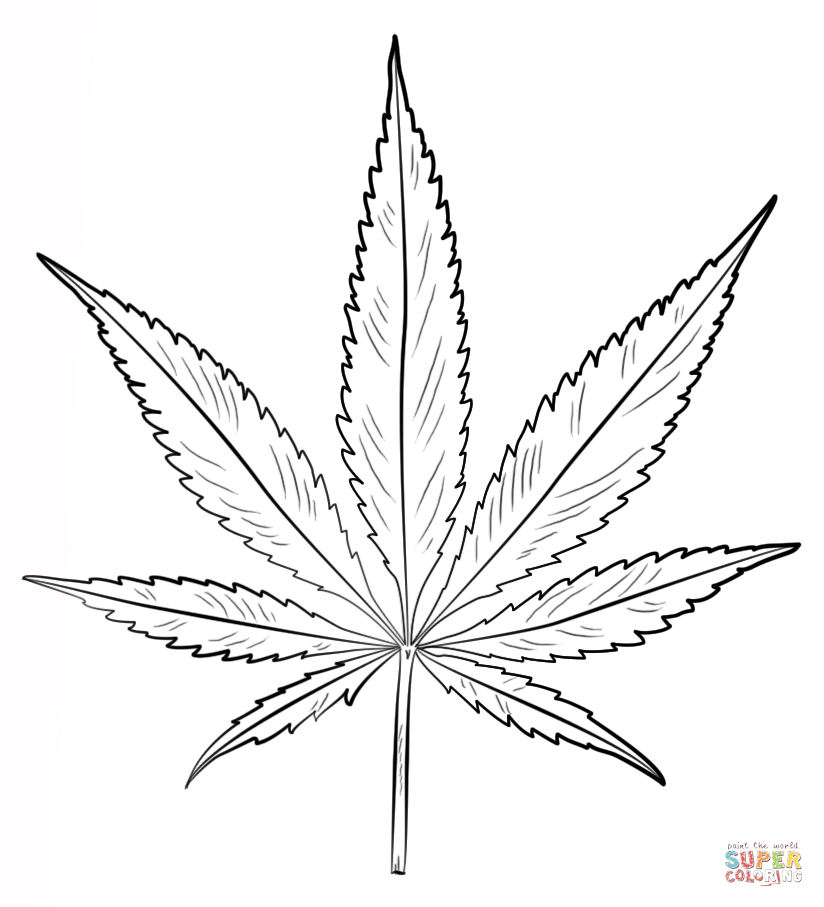pot leaf coloring pages additionally maple leaf outline coloring page