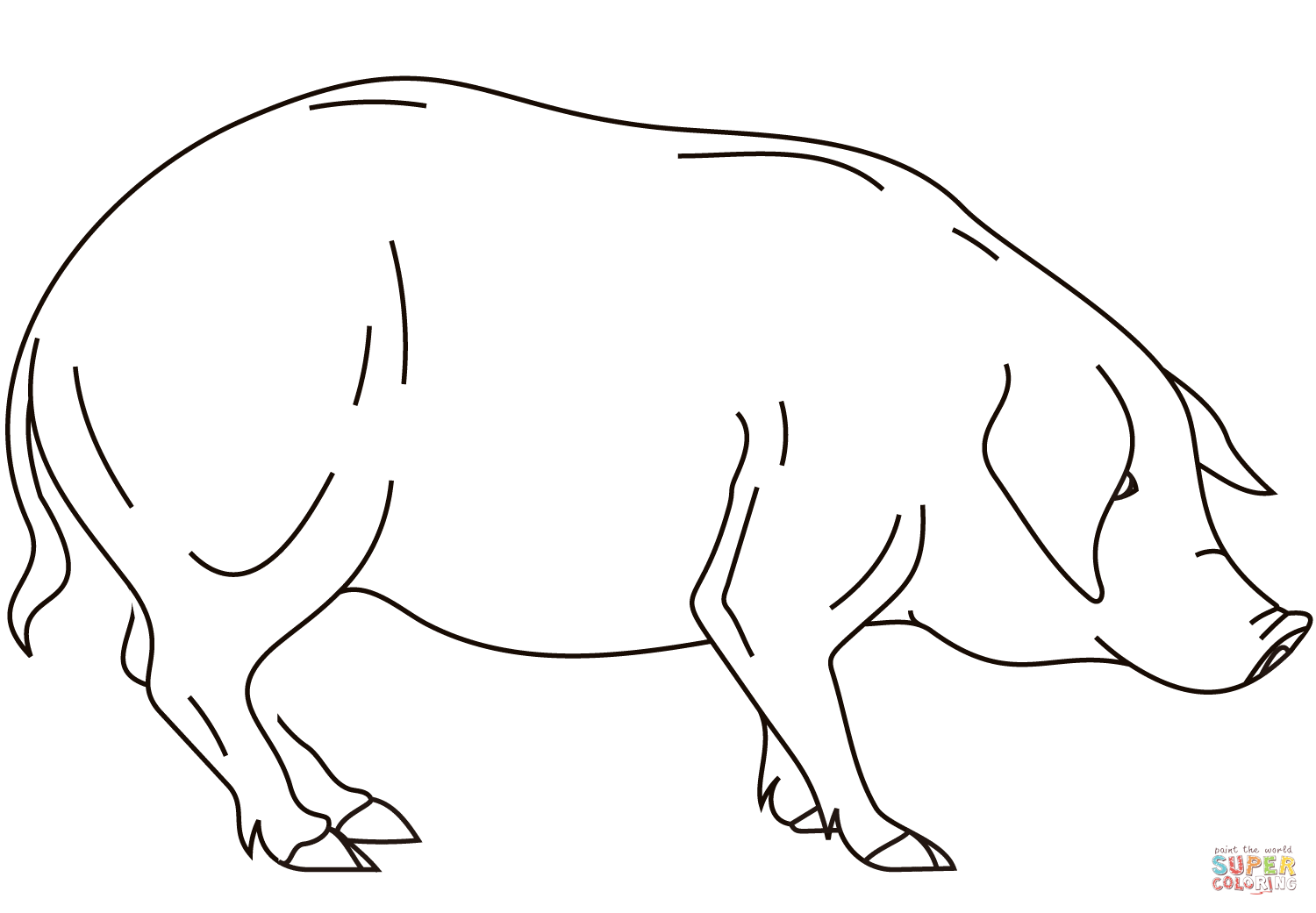 Realistic Pig Coloring Page