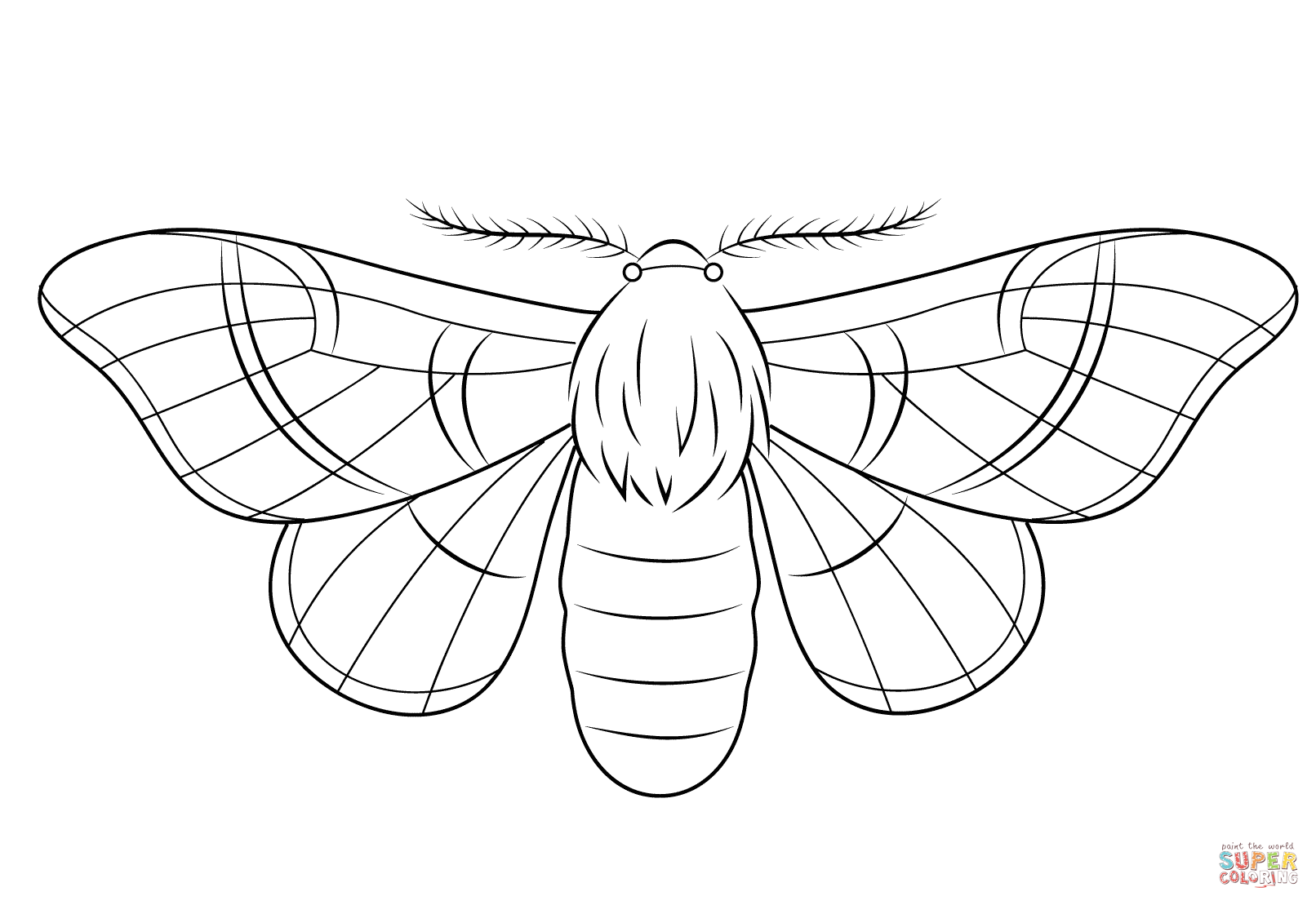 silkmoth coloring page free printable coloring pages