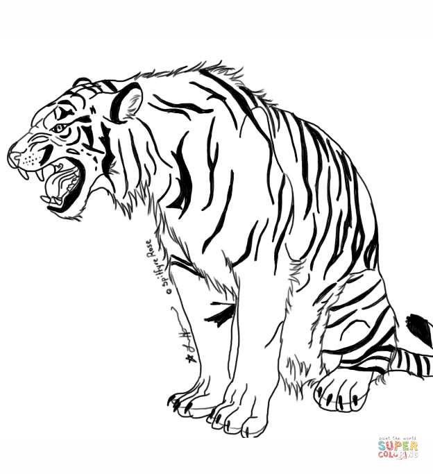 tigers coloring pages free coloring pages