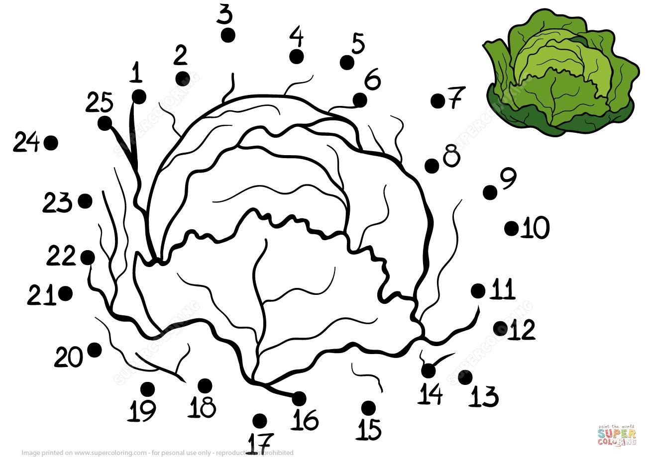 Cabbage Dot To Dot