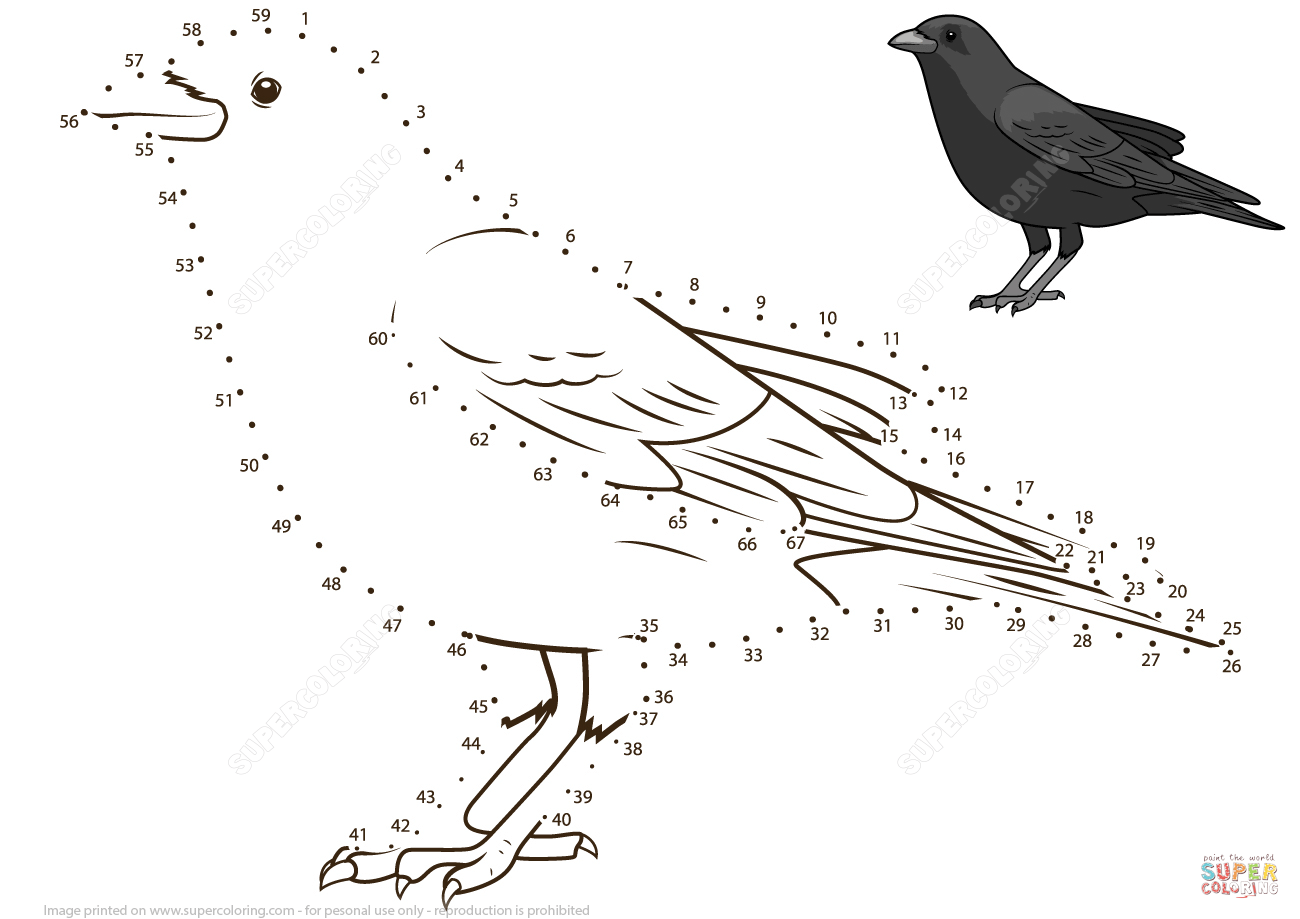 Crow Dot To Dot