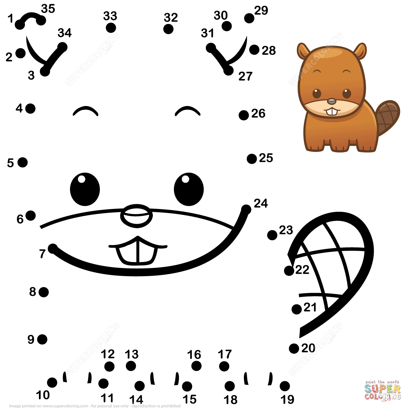 Cute Baby Beaver Dot To Dot