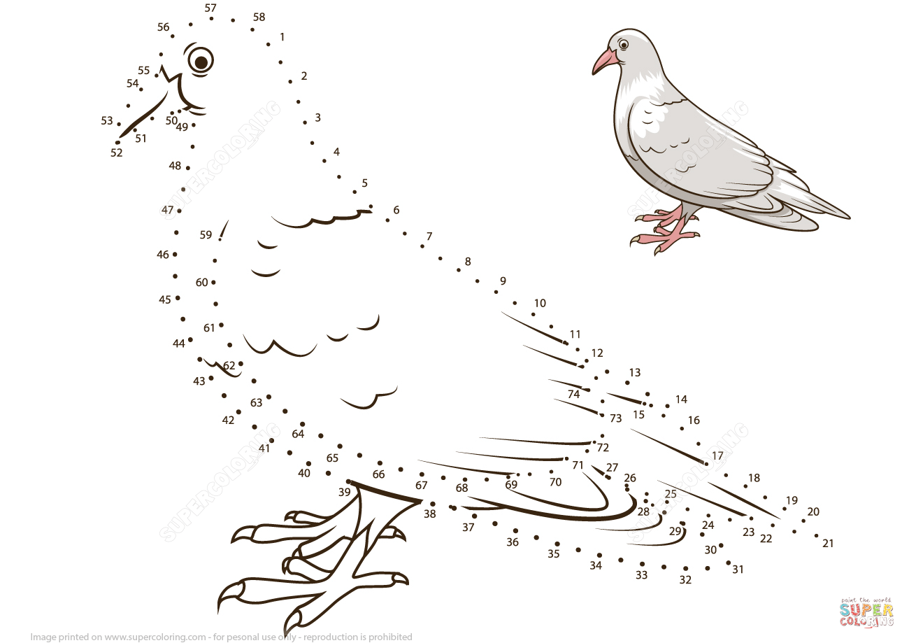 Pigeon Dot To Dot