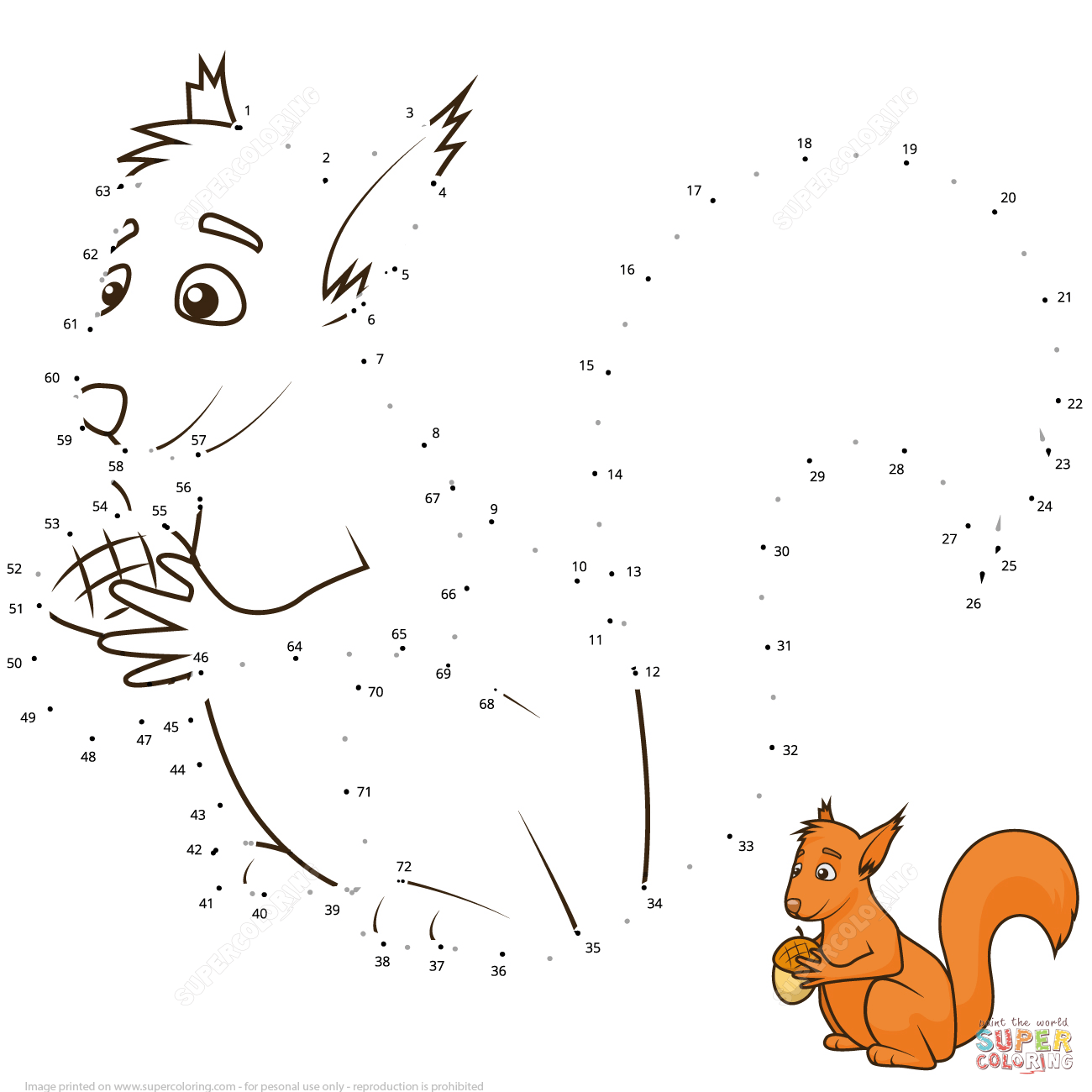 Squirrel Dot To Dot