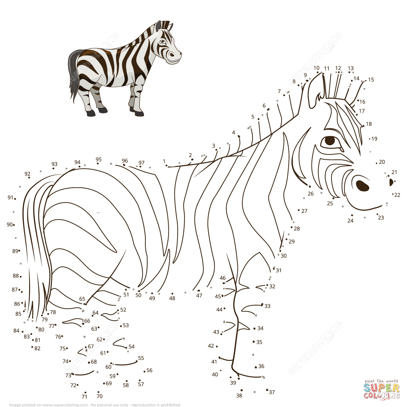 Zebra Dot To Dot