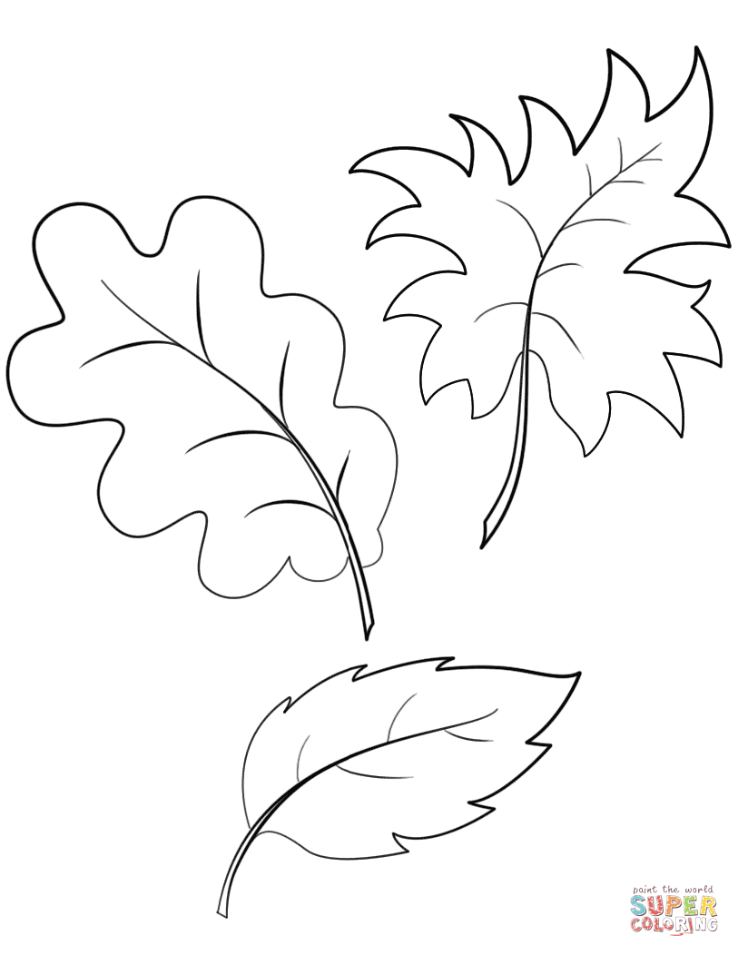 fall autumn leaves coloring page free printable coloring pages