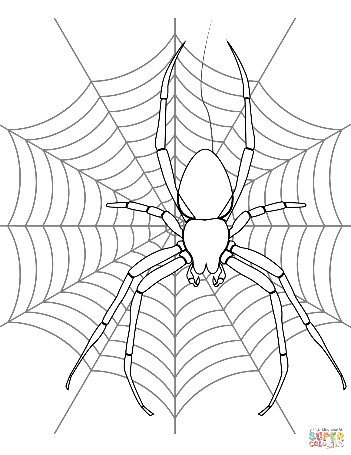 Spider On Its Web Coloring Page