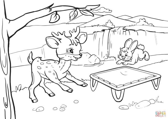 Rabbit and Deer are Bouncing on a Trampoline coloring page  Free