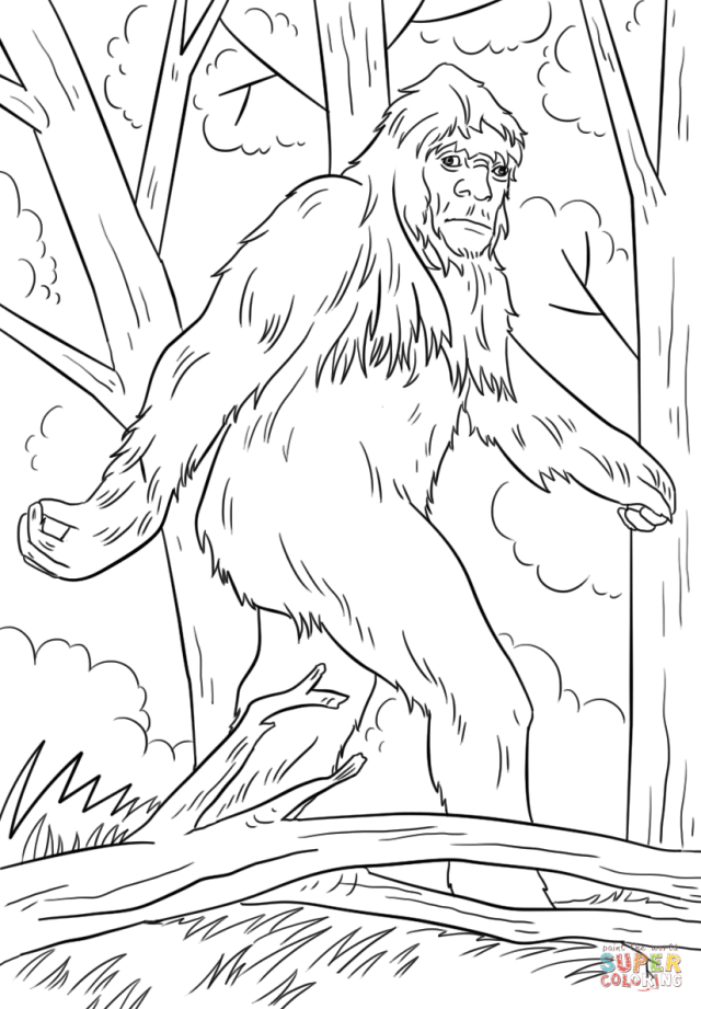 Sasquatch coloring page  Free Printable Coloring Pages