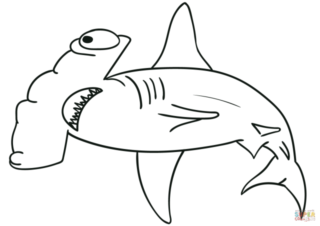Hammerhead Shark coloring page  Free Printable Coloring Pages
