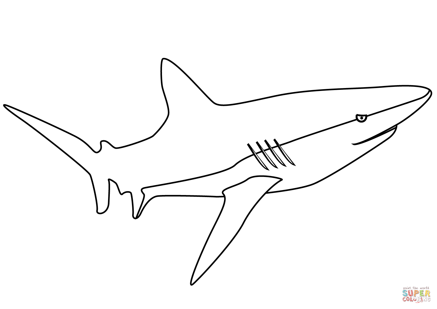 Shark Coloring Page Free Printable Coloring Pages