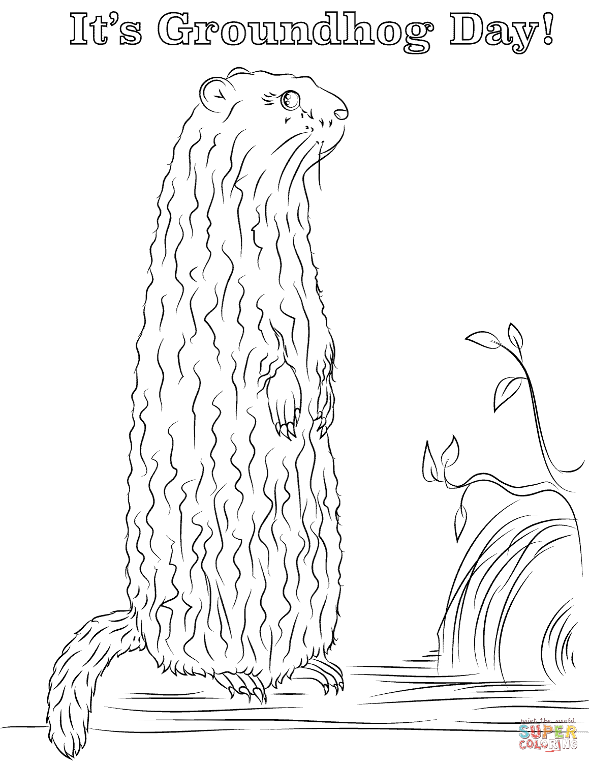 It S Groundhog Day Coloring Page
