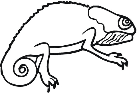 chameleon coloring page free printable coloring pages