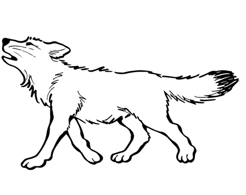 baby wolf coloring page free printable coloring pages