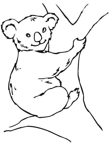 ausmalbild einfacher koala ausmalbilder kostenlos zum ausdrucken