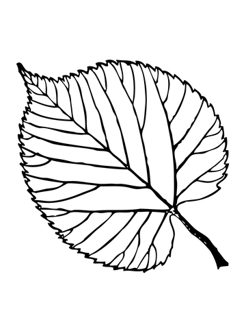 trees amp leaves coloring pages free coloring pages