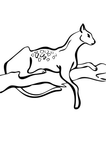 click serval on a tree coloring page for printable version