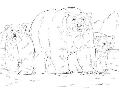 Polar Bears Coloring Pages Free Coloring Pages