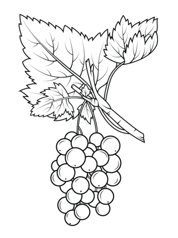 fruits coloring pages free coloring pages
