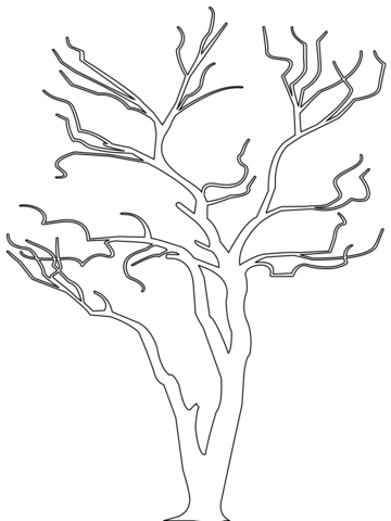 bare tree outline coloring page free printable coloring pages