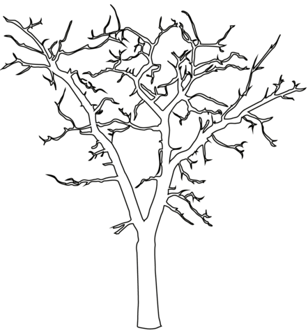 bare trees coloring pages free printable pictures