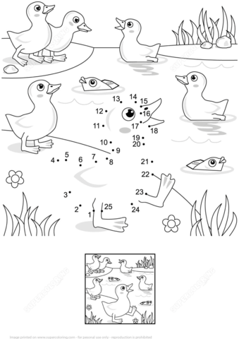 ducklings and fish at the pond dot to dot free printable
