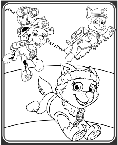 Everest Marshall And Chase Coloring Page Free Printable Coloring Pages
