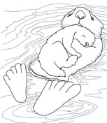 otter coloring page # 50