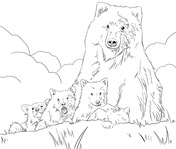 grizzly bears coloring pages free coloring pages