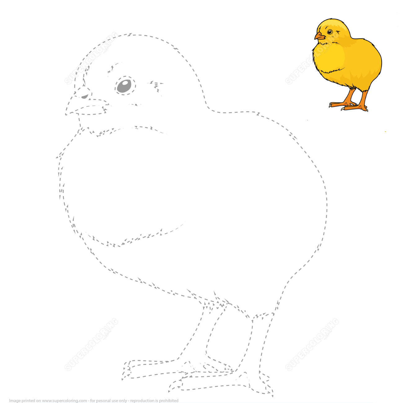 Draw A Chick By Tracing Dashed Line And Color