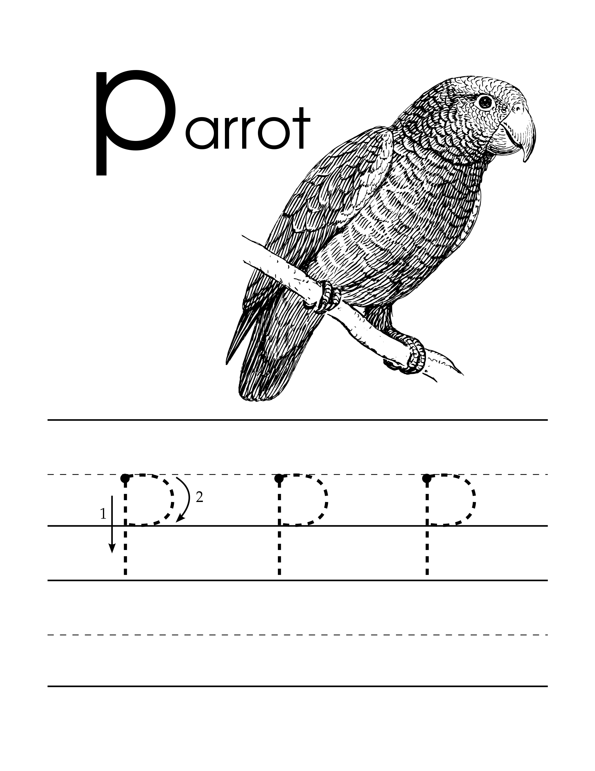Lowercase P Handwriting Worksheet For Pre Schoolers With Parrot