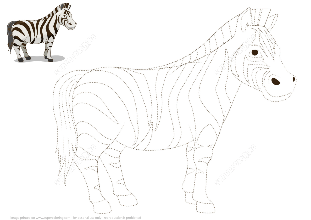 Connect The Dots To Draw A Zebra